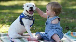 Niña-con-perro-de-tres-brazos-1-768x427